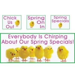 Chirping Spring Campaign