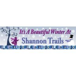 Beautiful Winter Banner