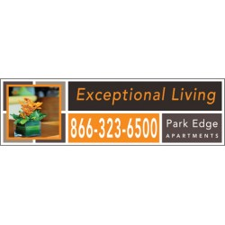 Exceptional Orange Banner