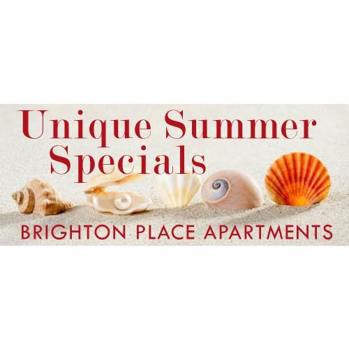 Summer  Shells Banner